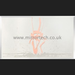 MT 529 Pink Ballet Shoe On Mirror